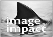 Image Impact logo